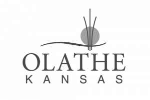 Todd Carrison works with Olathe Kansas real estate homeowners using virtual tours