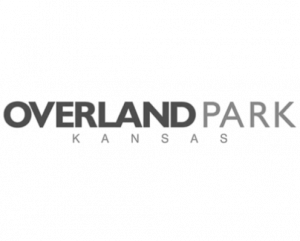 Todd Carrison works with Overland Park Kansas real estate homeowners using virtual tours